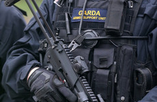 Gardaí carry out searches across Munster targeting alleged criminals involved in burglaries