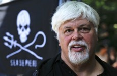 Interpol alert issued for Sea Shepherd's Captain Paul Watson