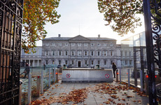 Advisory group will attempt to 'achieve gender balance' in Leinster House artworks