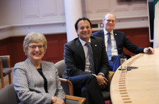 Varadkar and Coveney 'accept responsibility' for oversight in appointing Zappone special envoy