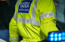 Man (20s) dies in single vehicle crash in Roscommon