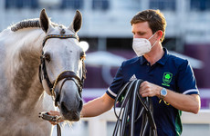 Irish showjumpers reach individual final after impressing in qualifier