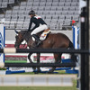 German pentathlon coach thrown out of Tokyo Games for punching a horse