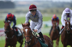 Ebro River in full flow for Phoenix Stakes gold at the Curragh