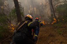 Firefighters battle blazes on Greek island of Evia for seventh consecutive day