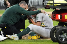 Baseball player hospitalised after being struck in the head with ball