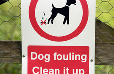 Dog fouling drops over 50% in Galway after spray paint trial