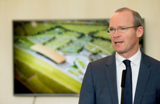 Scenes of large gatherings around All-Ireland hurling final 'indefensible', says Coveney