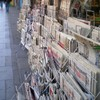 Newspapers still losing readers but tabloids buck trend