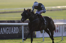 Bopedro powers home in Irish Cambridgeshire at the Curragh