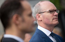 Sinn Féin calls for all documents related to Zappone appointment to be published