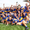 Wicklow atone for last year's final loss to claim All-Ireland title at the expense of Antrim