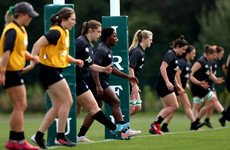 Griggs tells squad to embrace the pressure as Ireland head into World Cup qualifiers