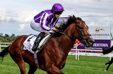 St Mark's Basilica shows his class to win €570k pot in thrilling Champion Stakes
