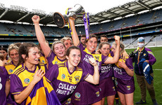 Wexford finish strongest to claim All-Ireland glory in Croke Park thriller