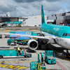 Aer Lingus ground crew reject structural changes as airline warns of 'profound' pandemic effect