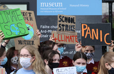 School pupils across the country strike for climate action