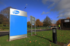 Pfizer starts large trial for anti-Covid pill