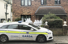 Judge in Foxrock murder case tells jury to flag any issues with nature of evidence being heard