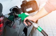 Carbon tax increase should be deferred due to surging fuel costs, ex-minister says