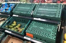 Johnson warns UK that shortages on the shelves could continue to Christmas