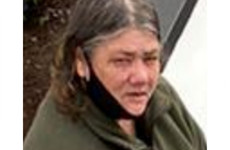 Gardaí seek help tracing 55-year-old woman missing from Dublin