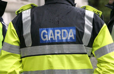 Gardaí renew witness appeal for collision which hospitalised a woman in her 40s
