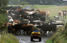 Agriculture sector to have 'really ambitious targets' for reducing emissions