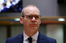 Coveney 'concerned' over Israel's labelling of Palestinian NGOs as terrorist organisations