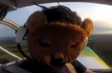 Belarus releases two men on bail over teddy bear stunt