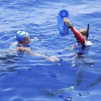 Diana Nyad pulled from water during Cuba-US swim
