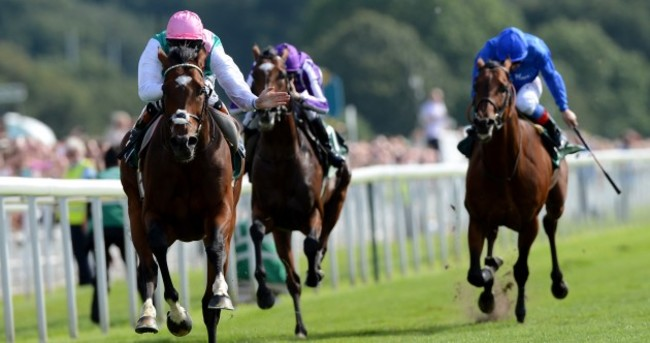 Ain't no stopping! Frankel simply sublime in Juddmonte win