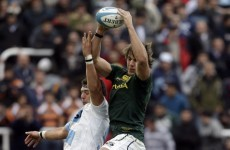 Pumas and Springboks share the spoils in Argentina