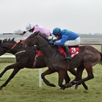 Fairyhouse cleared for racing after inspection