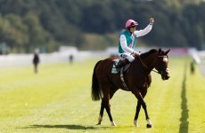 Paris or Ascot? It's up to Frankel, says Cecil