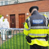 Two arrested over Mulhuddart stabbing