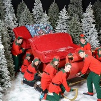 Elves wanted: grinches need not apply