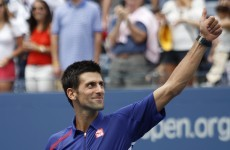 Early bird Djokovic, Ferrer into US Open last 16