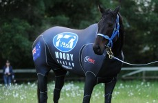 Peter Moody admits he may retire Black Caviar
