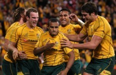 Rugby Championship: Wallabies prepare attacking game plan
