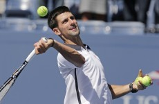 Djokovic sees off Ferrer to set up final meeting with Murray