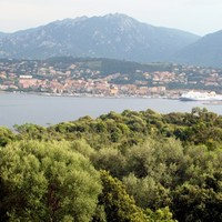 Three people shot dead in a car on French island of Corsica