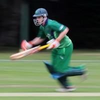 Ireland cruise past Zimbabwe in T20 warm-up