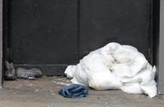 Increased demand for Merchant's Quay Ireland homeless services