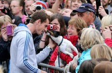 Hero's welcome: Murray given rousing reception in Dunblane