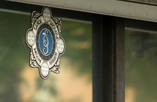 Man (25) shot at his home in Carlow