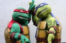 Are Teenage Mutant Ninja Turtles really making a comeback?