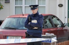 UPDATED: Woman stabbed to death in Clonsilla