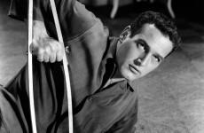 Paul Newman fan leaves €7 million to Barretstown