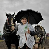 Over 50,000 brave the mud and rain for National Ploughing Championships
